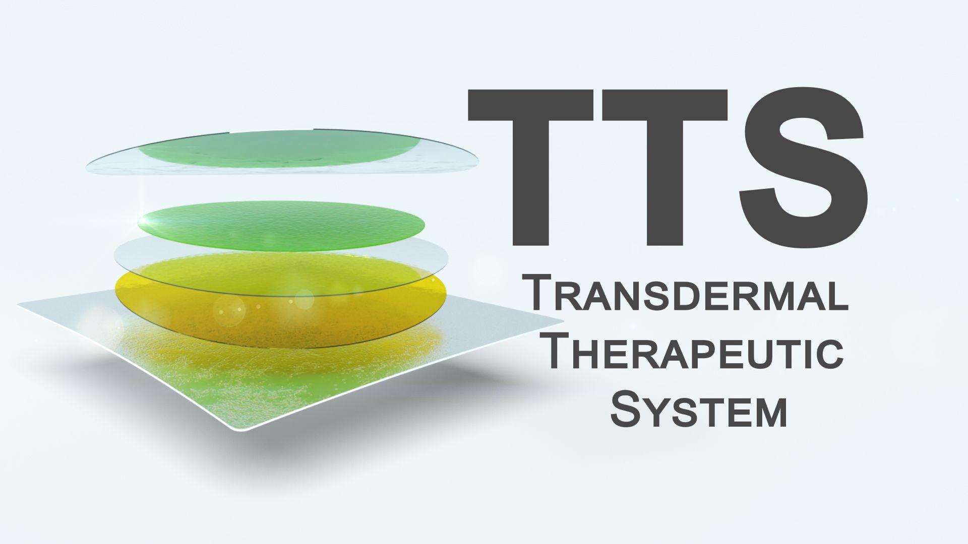 LTS Video Technologien TTS